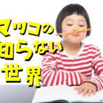 マツコの知らない世界おすすめ鉛筆は?小日向京オススメと個人的紹介も