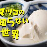 マツコの知らない世界に工藤詩織!おすすめの豆腐はどこで購入できる?